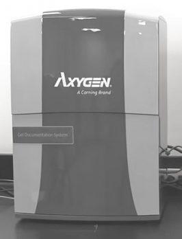 axygen-gd1000