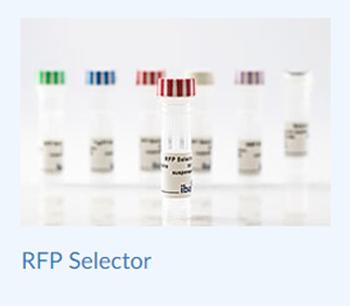 iba-selector-rfp-19dec18