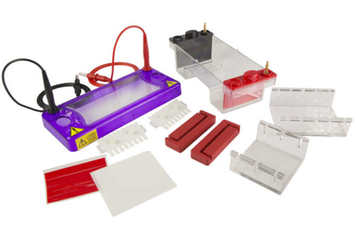 cleaver-multisub-electrophoresis-systems-h02-11mar19