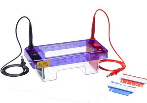 cleaver-multisub-electrophoresis-systems-h03-11mar19