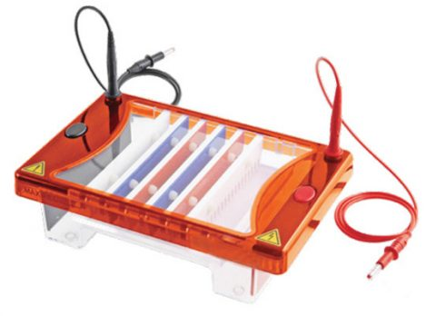 cleaver-multisub-electrophoresis-system02-jun19